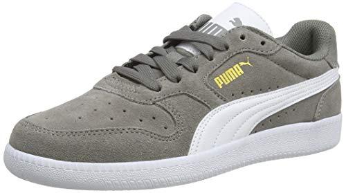 Puma Unisex-Erwachsene Icra Suede Sneaker, Grau