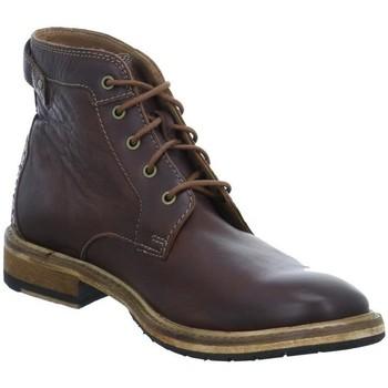 Clarks Stiefel Clarkdale Bud Herren Boots